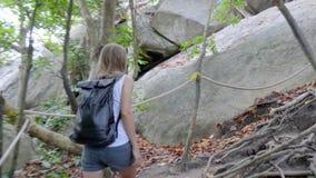 Caminho na selva filme