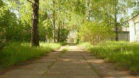 Caminho no parque Tiro constante liso e lento da came Dia limpo e brilhante video estoque