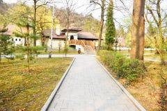 Caminho novo e trilha bonita das ?rvores para correr ou andar e dar um ciclo para relaxar no parque no campo de grama verde no pa imagem de stock royalty free