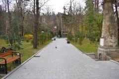 Caminho novo e trilha bonita das ?rvores para correr ou andar e dar um ciclo para relaxar no parque no campo de grama verde no pa foto de stock royalty free