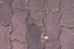 Caminho pavimentado bloco de cimento, fundo Foto de Stock Royalty Free