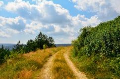 Caminho pequeno na natureza Imagem de Stock
