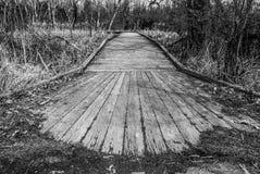 Caminho preto e branco 3872 da natureza imagem de stock royalty free