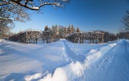 Caminhos ao parque do inverno Fotos de Stock