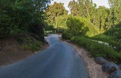 Caminhos em um recurso da natureza em Israel do norte fotos de stock royalty free