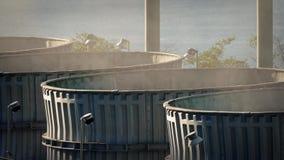 Camini industriali enormi che pompano fuori vapore stock footage