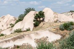 Camini leggiadramente Cappadocia Fotografia Stock
