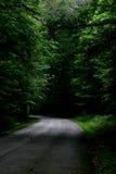 Camino Imagenes de archivo