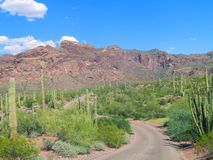 Camino abandonado en desierto coloreado pastel foto de archivo
