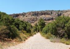 Camino al aire libre entre dos filas de arbustos hacia gra Foto de archivo libre de regalías