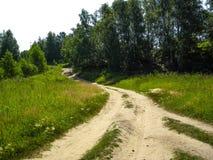 Camino al bosque, camino de Sandy Foto de archivo libre de regalías