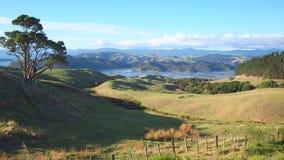 Camino al Coromandel Foto de archivo libre de regalías