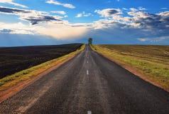 Camino al horizonte con un árbol y las nubes fotografía de archivo libre de regalías