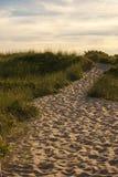 Camino al océano Fotografía de archivo libre de regalías