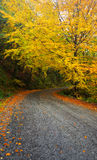 Camino al otoño, Geres Imágenes de archivo libres de regalías