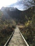 Camino al paraíso Fotos de archivo