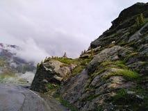Camino al paso del Gavia Foto de archivo