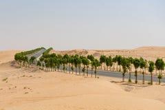 Camino alineado árbol con paisaje del desierto Foto de archivo libre de regalías