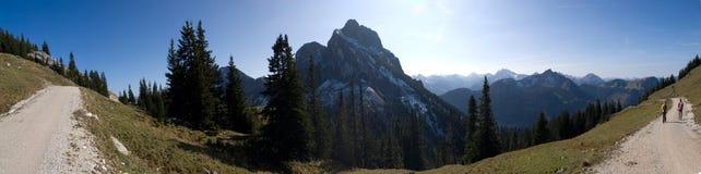 Camino alpestre de la montaña que muestra la montaña y árboles Fotografía de archivo