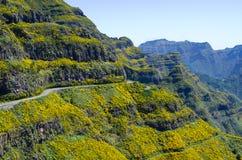 Camino alto en las montañas de Madeira - Portugal Imagen de archivo libre de regalías