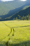 Camino amarillo en montañas imágenes de archivo libres de regalías