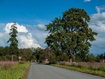 Camino ancho directo a la casa Fotos de archivo