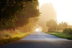Camino apartado por la mañana Fotos de archivo libres de regalías