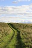 Camino aplastado de la hierba de las ruedas de coches Fotos de archivo libres de regalías