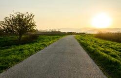 Camino asoleado Fotografía de archivo libre de regalías