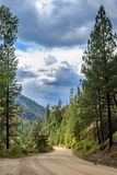 Camino backcountry de Idaho fotografía de archivo libre de regalías