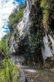 Camino Banos - Puyo, Ecuador de las cascadas imagen de archivo libre de regalías