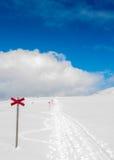 Camino blanco Imagenes de archivo