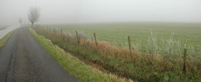 Camino brumoso Imagen de archivo