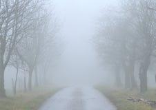 Camino brumoso Fotografía de archivo libre de regalías
