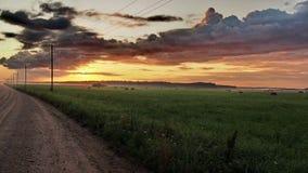 Camino, campo verde y nubes anaranjadas en la puesta del sol Foto de archivo