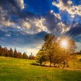 Camino cerca del bosque del otoño en la colina en la puesta del sol Imágenes de archivo libres de regalías