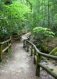 Camino cercado Foto de archivo