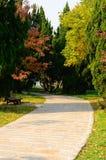 Camino colorido Foto de archivo
