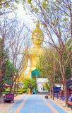 Camino colorido debajo de árboles en Wat Muang con el stasue grande de Budha Fotos de archivo libres de regalías
