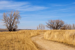 Camino con curva doble Imagen de archivo libre de regalías