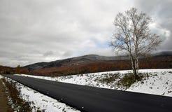Camino con el Mountans Imagen de archivo