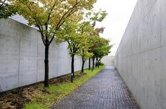 Camino con los árboles del cereza-flor Fotografía de archivo libre de regalías