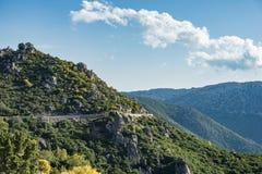 Camino con los árboles verdes, Strada Statale 125, Ogliastra, Cerdeña, Italia de la montaña foto de archivo libre de regalías