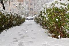 Camino con pequeña nieve blanca y mullida imagen de archivo libre de regalías