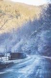 Camino congelado Fotos de archivo