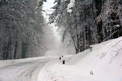 Camino congelado que da vuelta para helar a través del bosque fotos de archivo