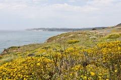 Camino costero Imágenes de archivo libres de regalías