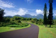 Camino curvado de la isla Fotografía de archivo