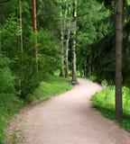 Camino curvado en parque Imágenes de archivo libres de regalías