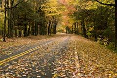 Camino curvado otoño hermoso imagenes de archivo